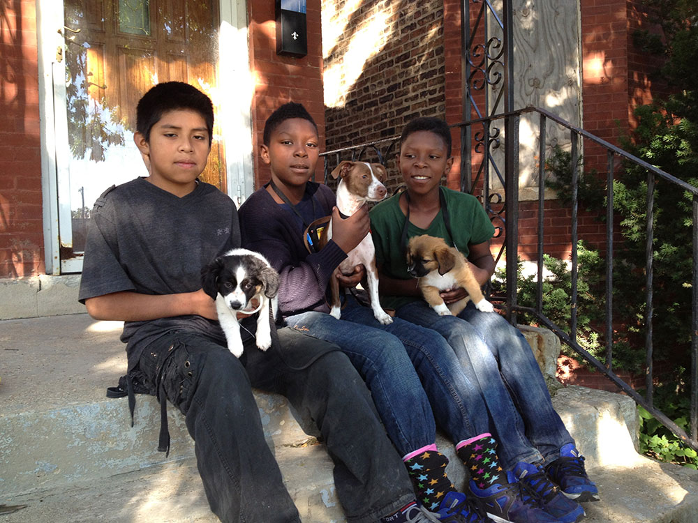 Kids sitting on a porch with pets